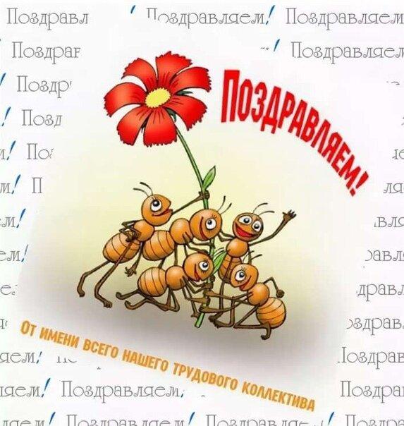 прикольные поздравления стихи на день рождения сотрудников растения можно