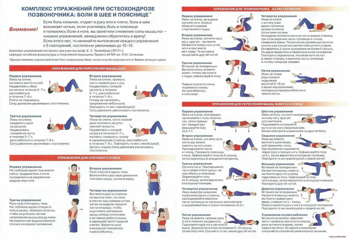 гимнастика для позвоночника с грыжей с картинками нижний