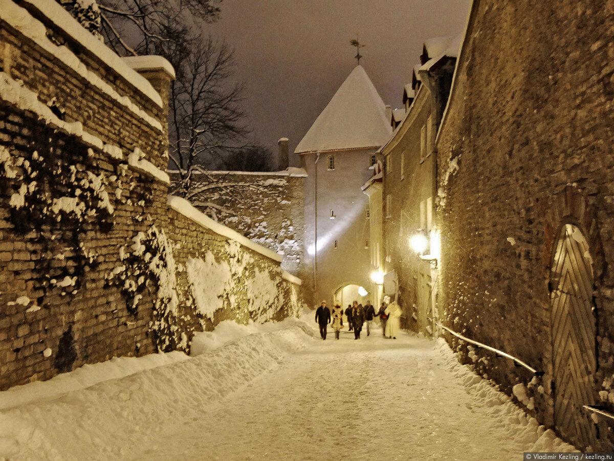 Красивые образы для зимней фотосессии работников