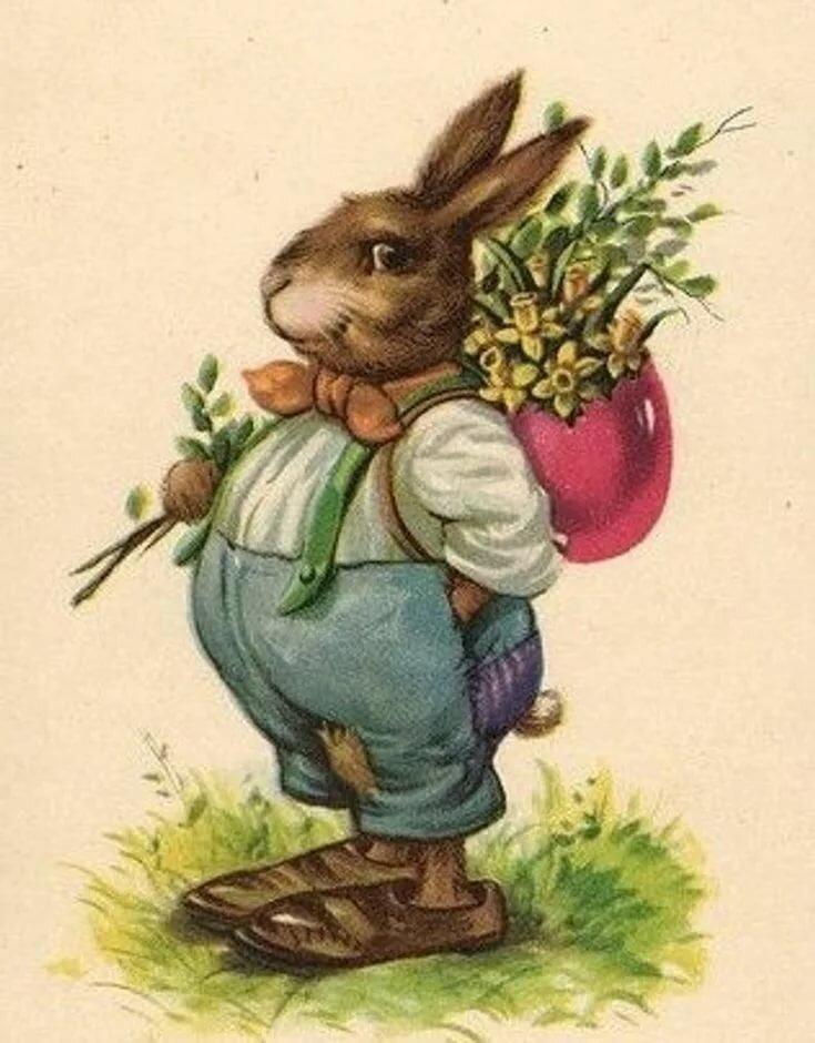 Поздравления для кроликов