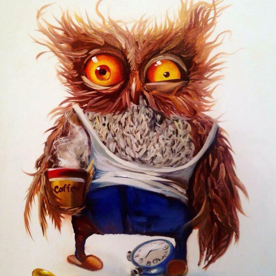 взъерошенная сова рисунок