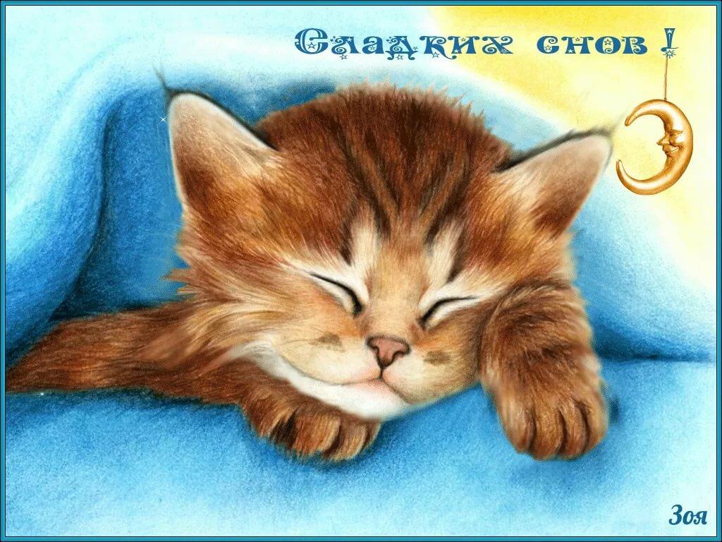 Открытки спокойной ночи кошки анимация