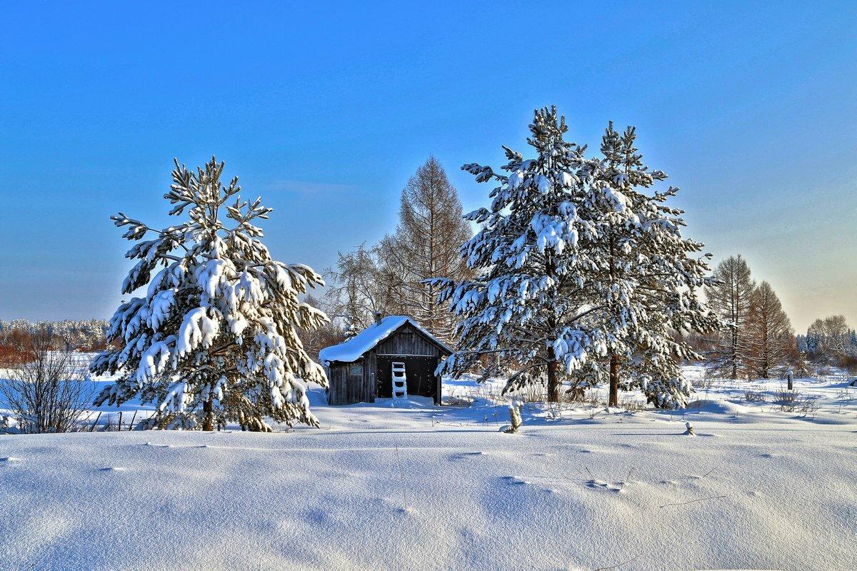 мечтах фото и картинки русской зимы качественных конструкций собственной