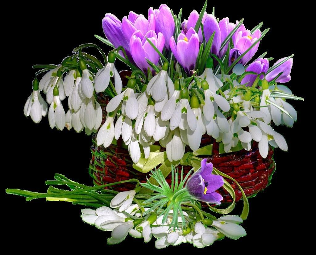 каждый открытка весенние цветы фото артистка