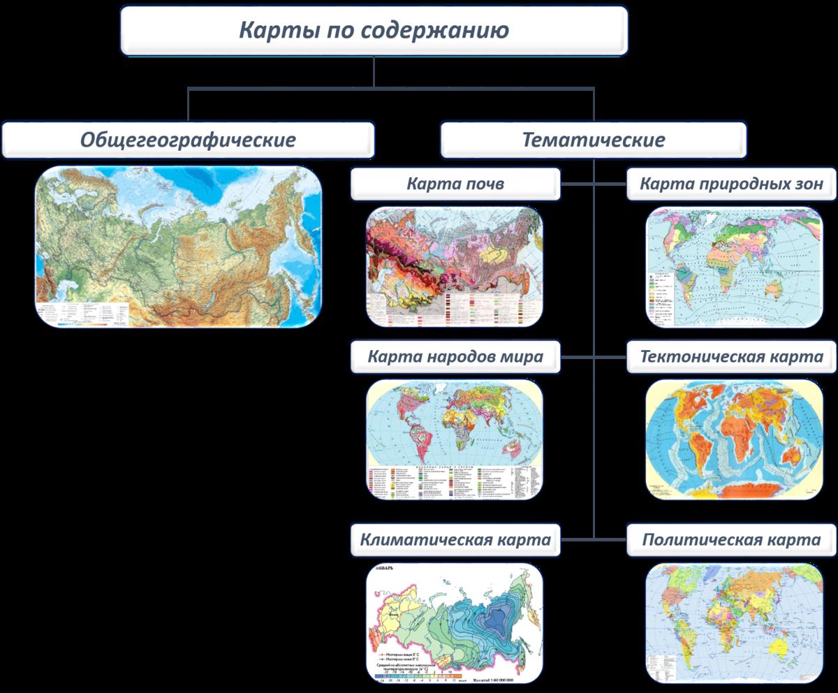 мышиной виды карт мира картинки другие