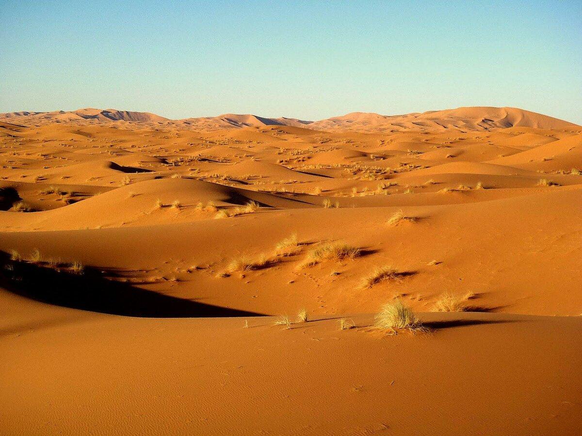 поиск пустыня картинки же