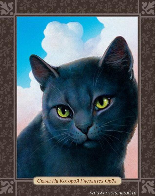 Картинки и карты котов воителей