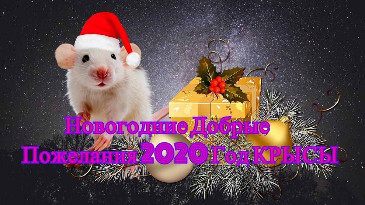 Добрые Новогодние Пожелания 2020. Год Белой Крысы. - YouTube