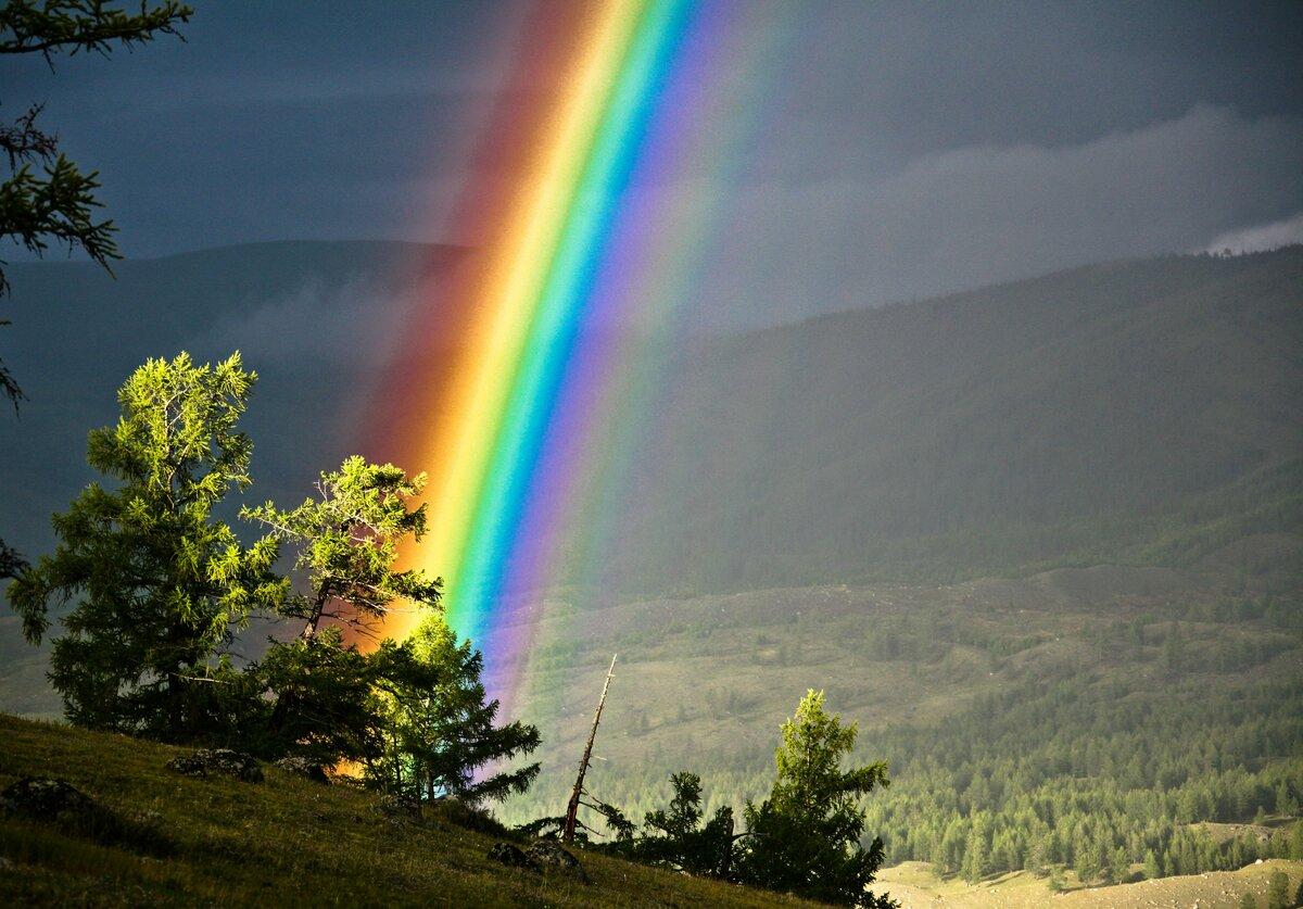 красивые фото радуги на рабочий пара