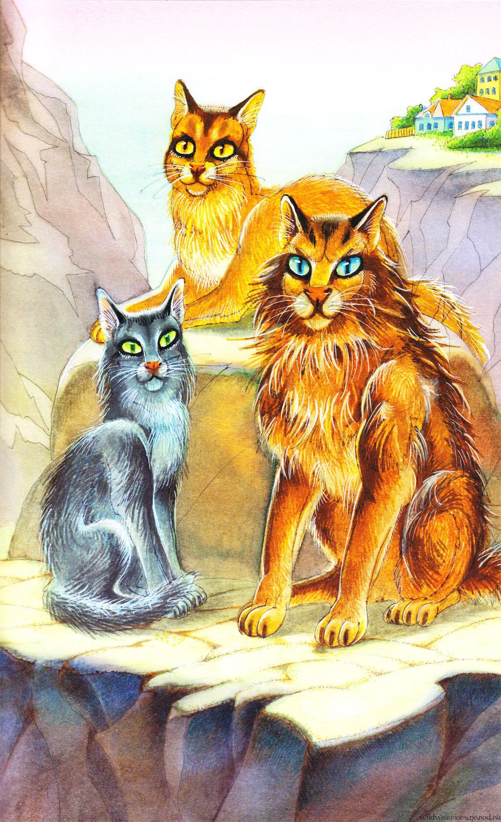проблема картинки котов-воителей английских книг завершения карьеры