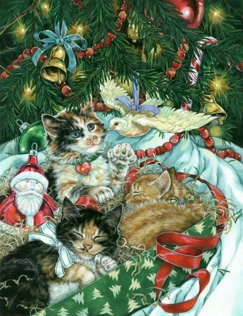 Новогодня открытка с котом