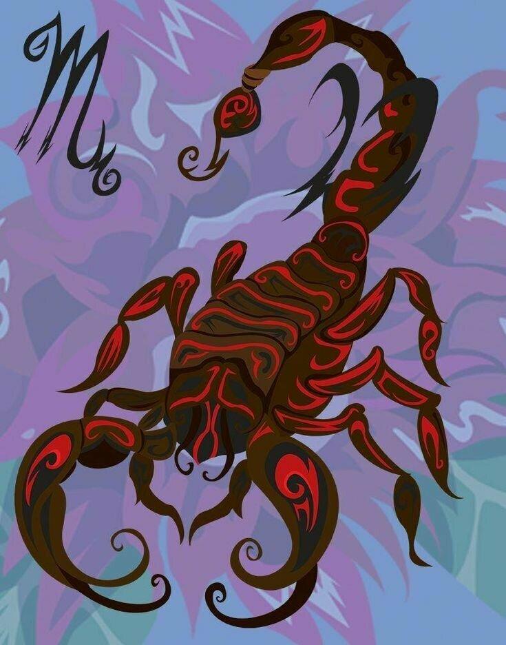Картинки для скорпиона экстремальные
