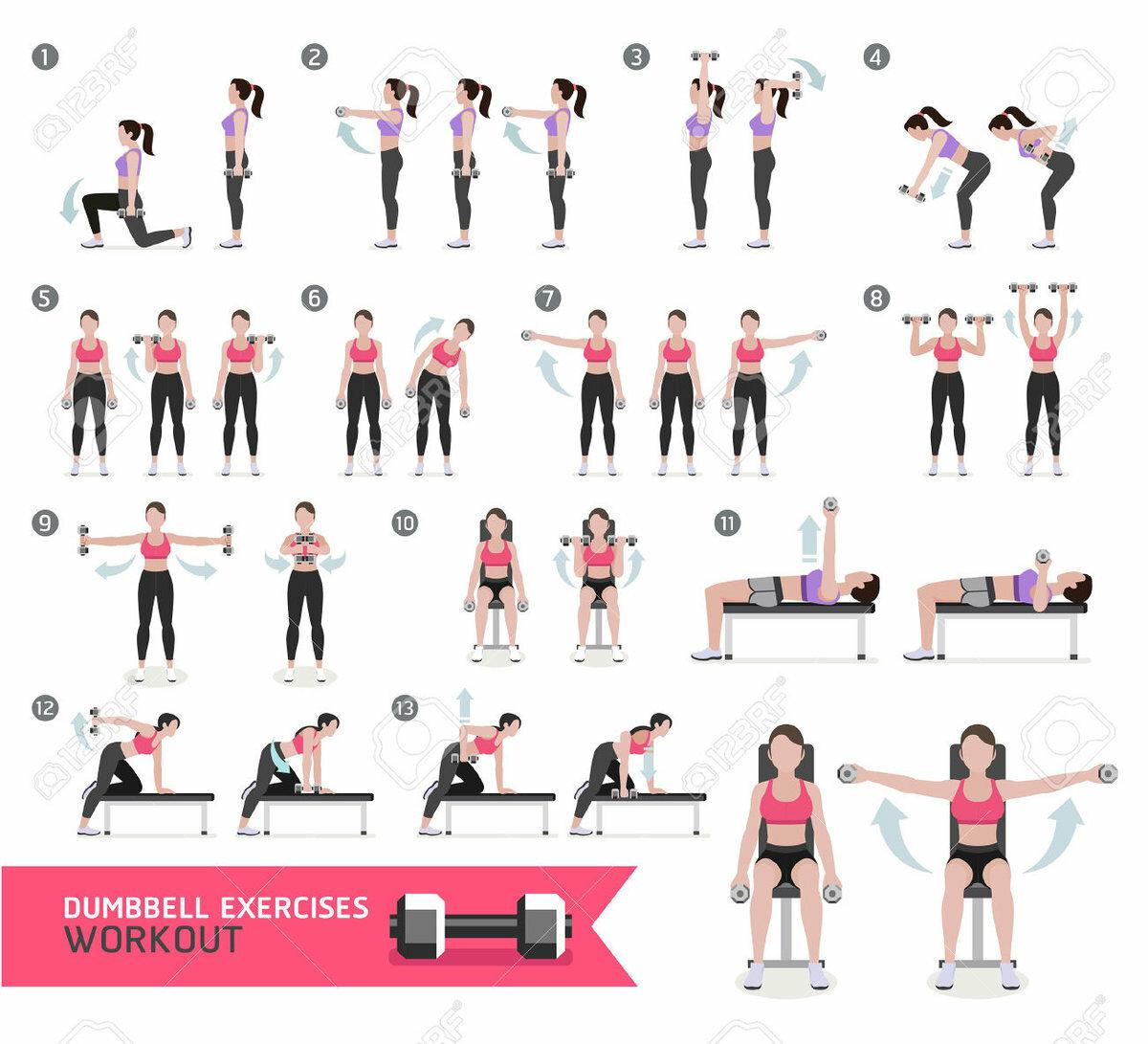 Упражнения с гантелями для женщин по картинками