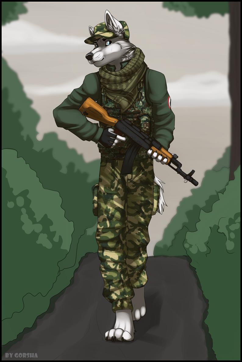 Лиса военная картинки