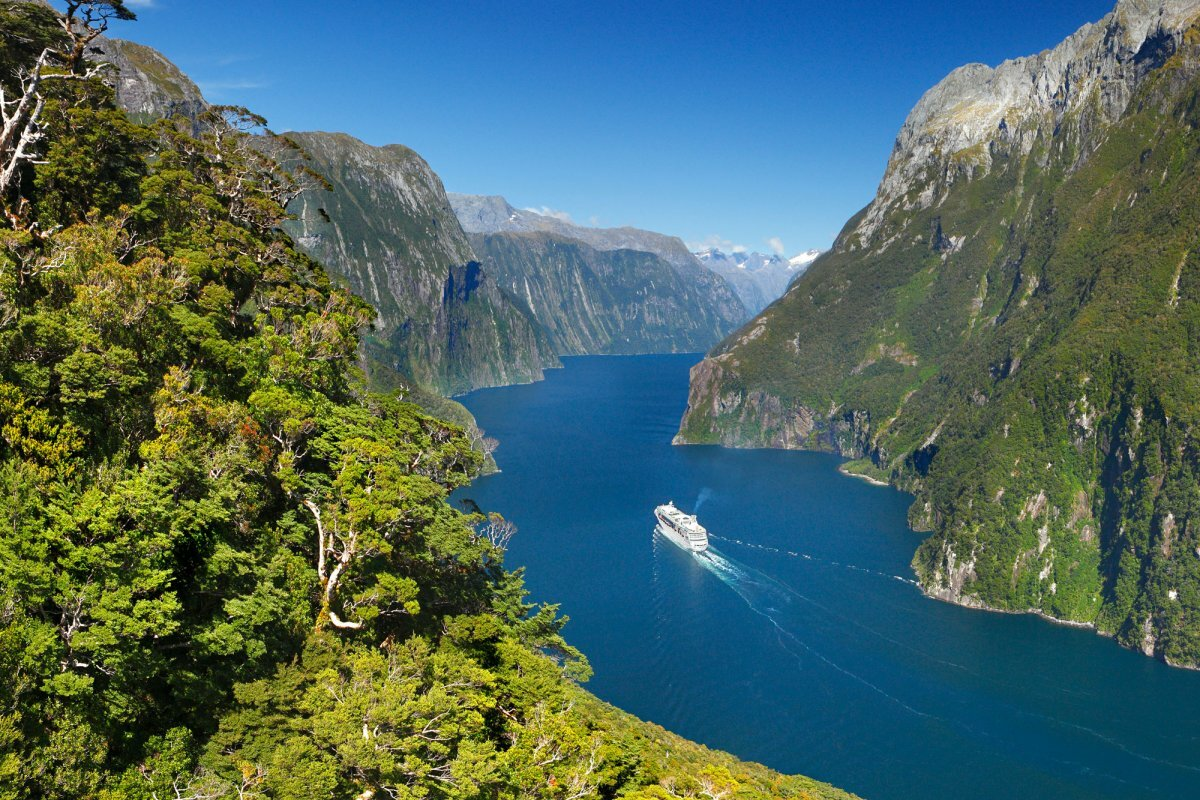 вымыть руки картинки новой зеландии достопримечательности который садит дерево