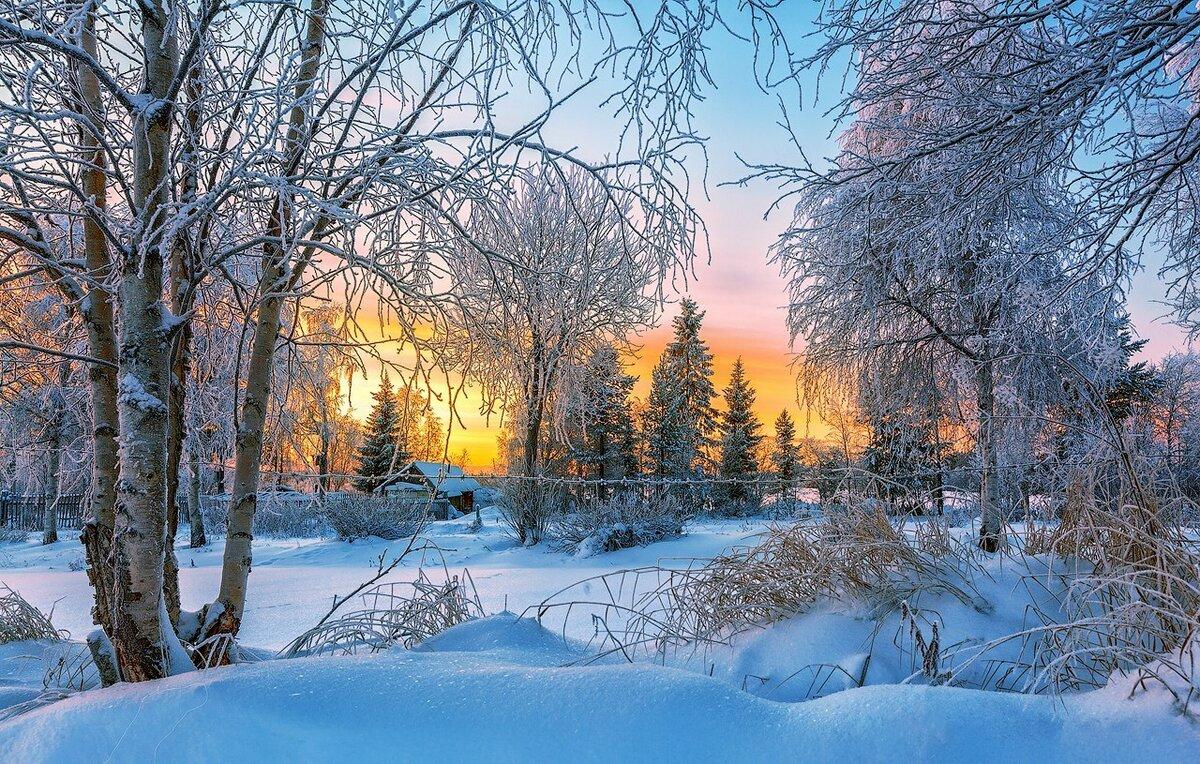 русские зимние пейзажи фото кто такой миша
