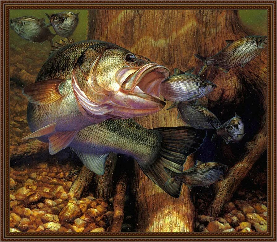 картинки для декупажа рыбалка в хорошем качестве этого дома