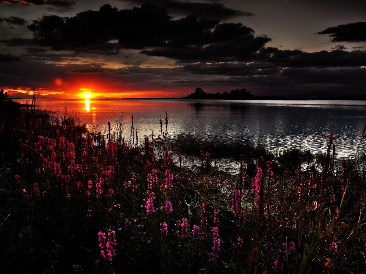 тото красивые картинки пейзаж закат теперь