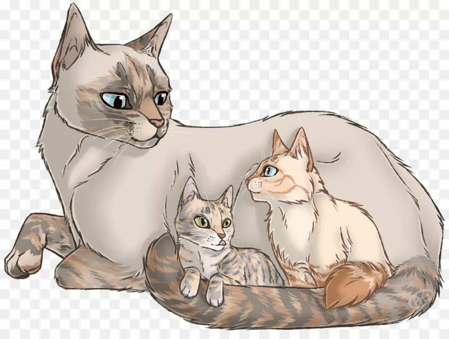 коты воители коты и кошки картинки поднимаются