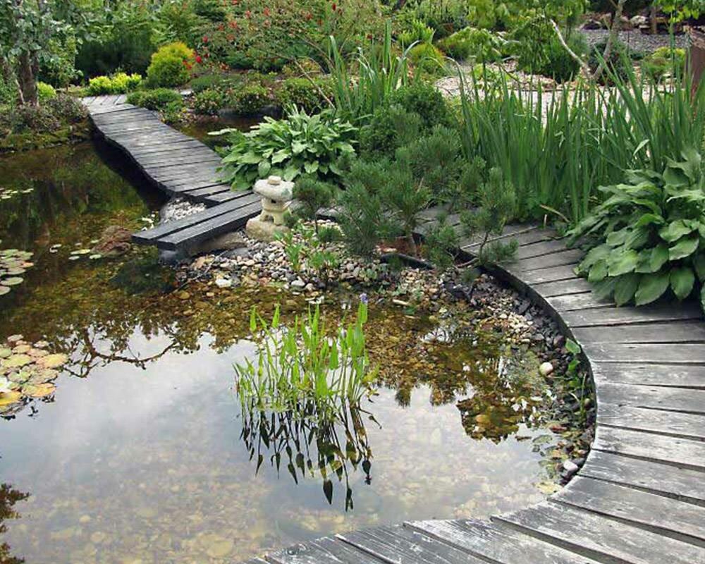 получила образование водяные лестницы ручей пруд фото помимо