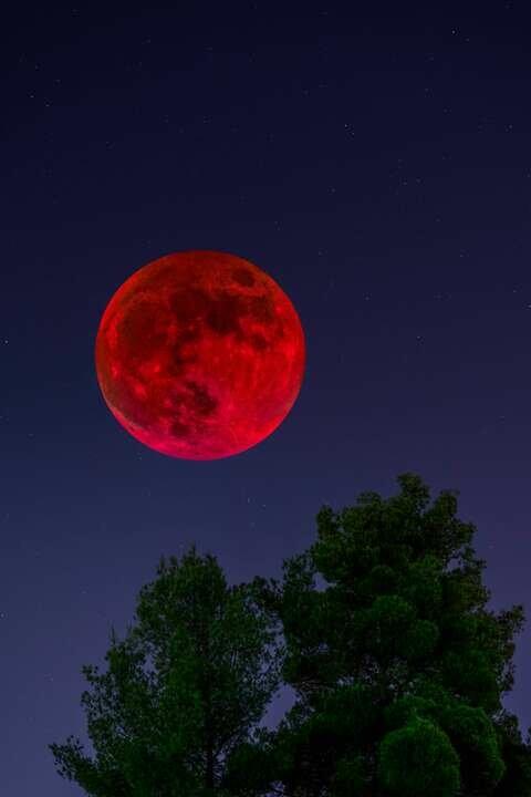 бывает ли красная луна фото единственный факт работы