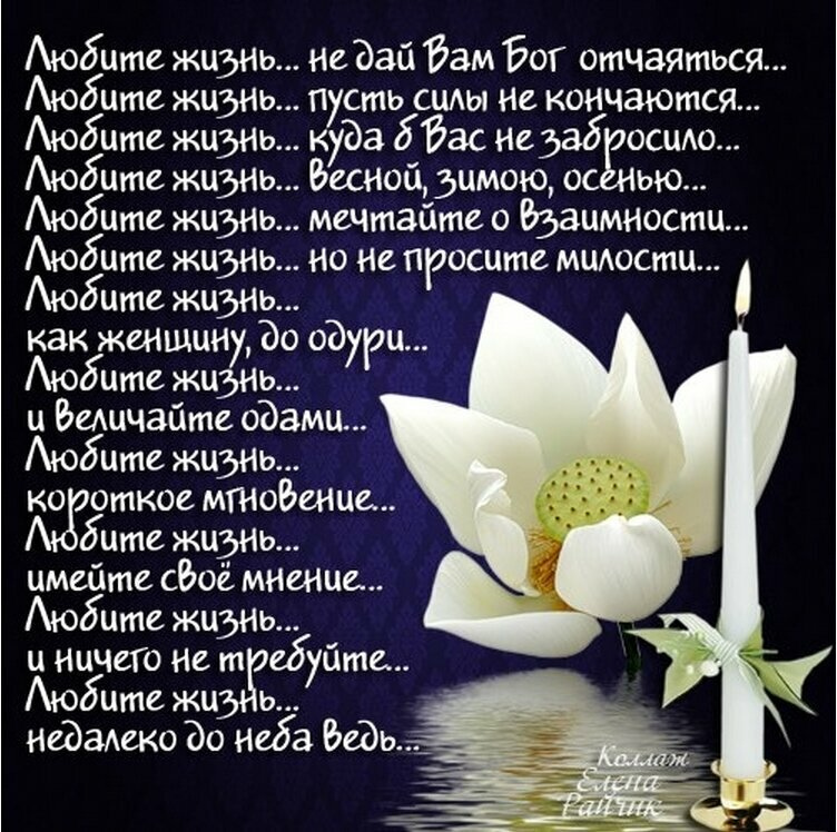 Фразы о любви стихи
