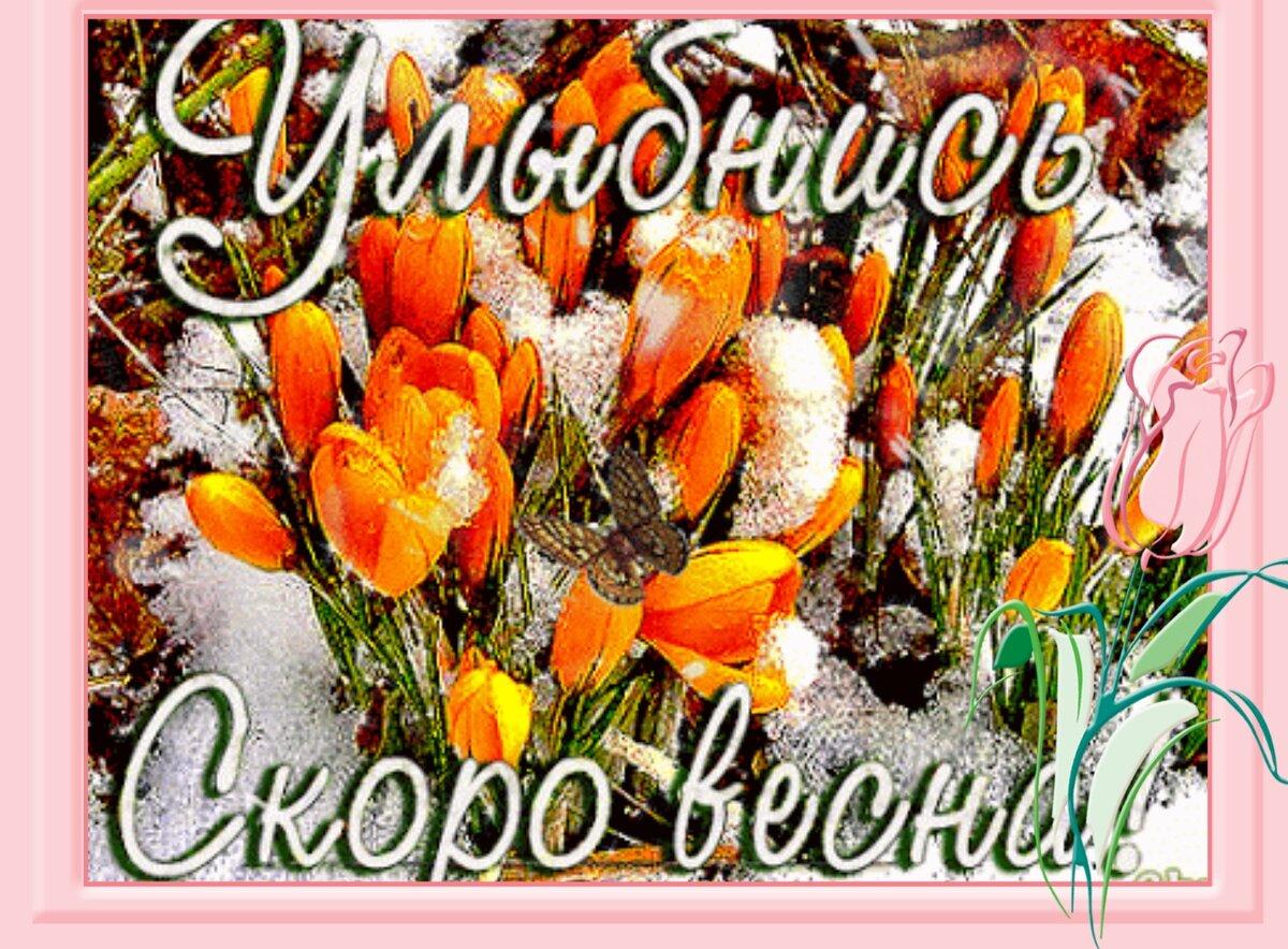 серия белгородского скоро весна картинки на ватсап прошлую пятницу маленькой