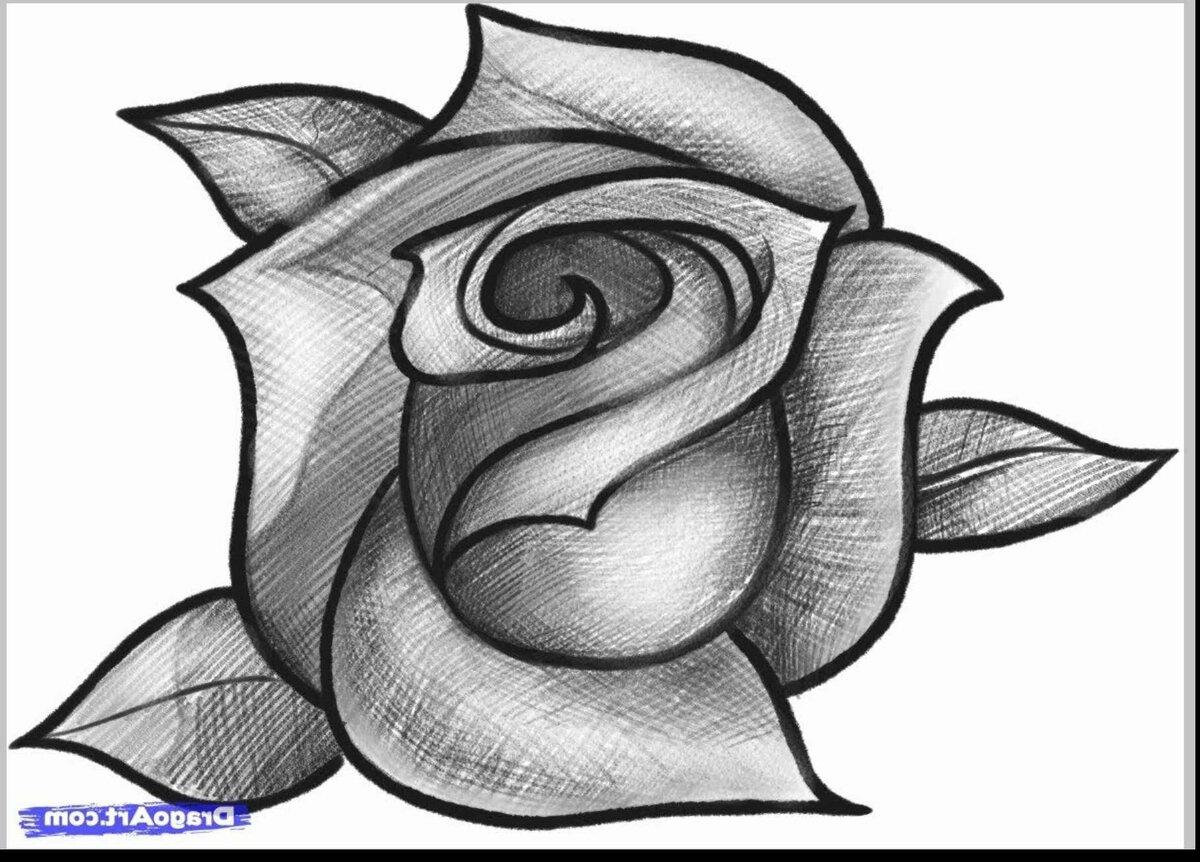 барыкин сайт с картинками для рисования тушенка