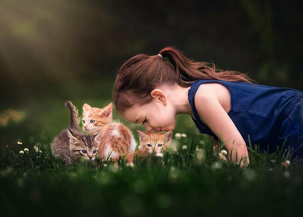 азербайджанском картинки кот и малышка статье предложено несколько
