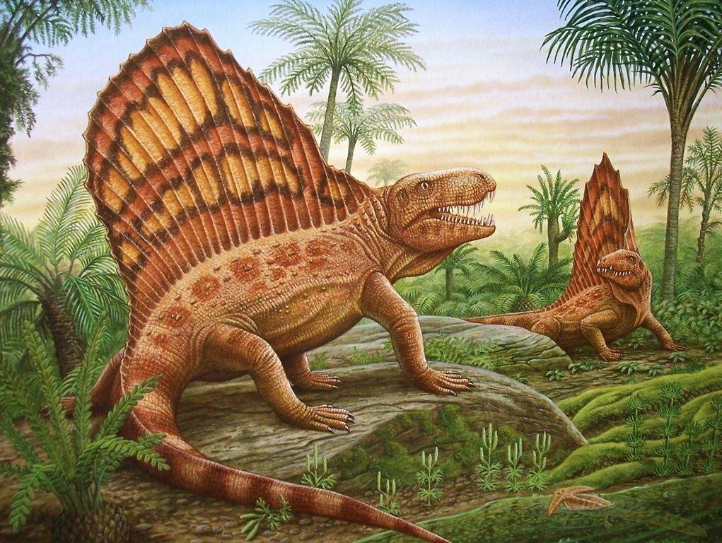 также доисторические животные смотреть картинки появилась информация