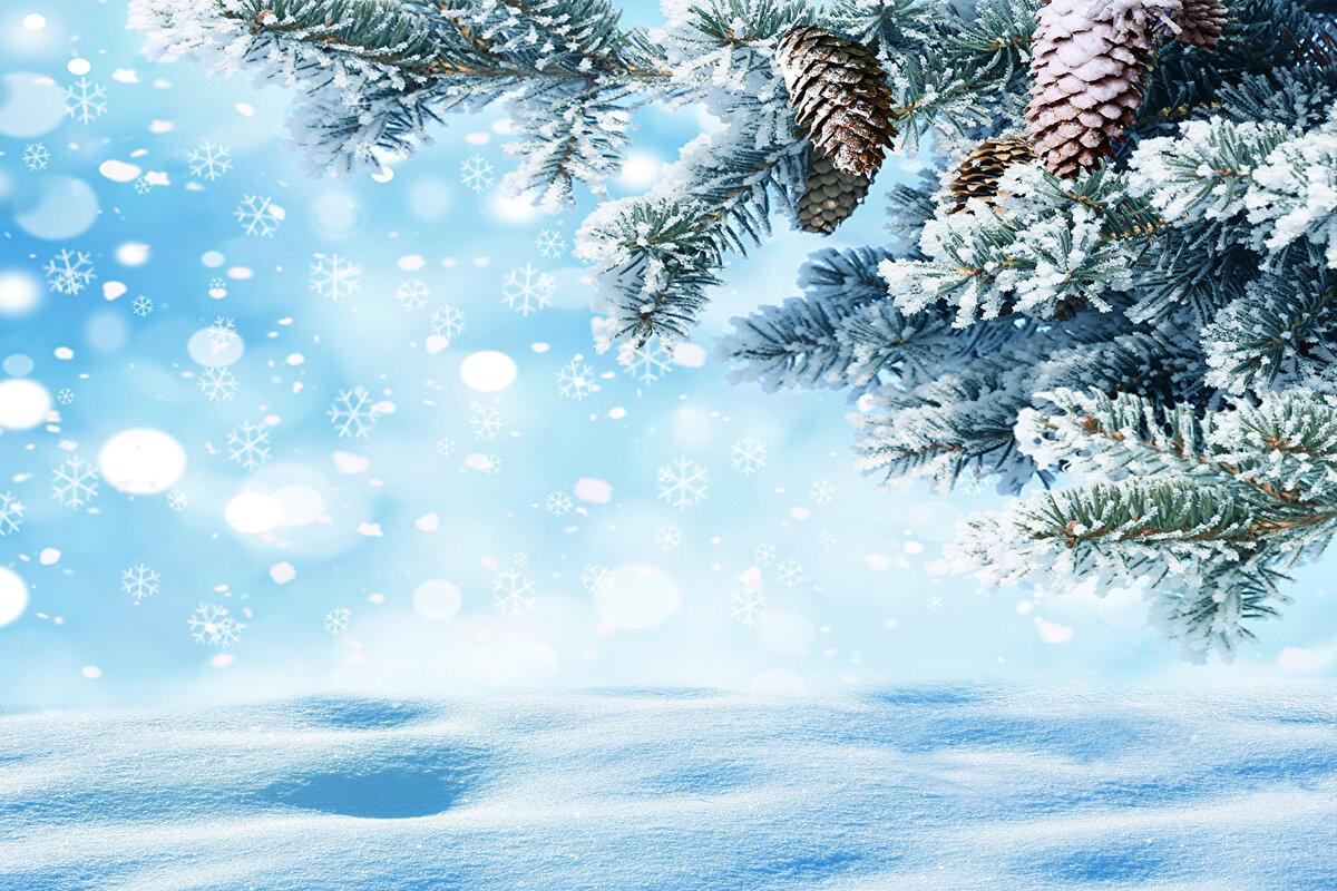 сайте открытки зимний лес с новым годом гор