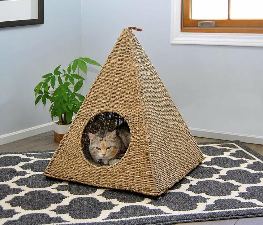 одну фотографию домики для кошек фото сожалению, информация