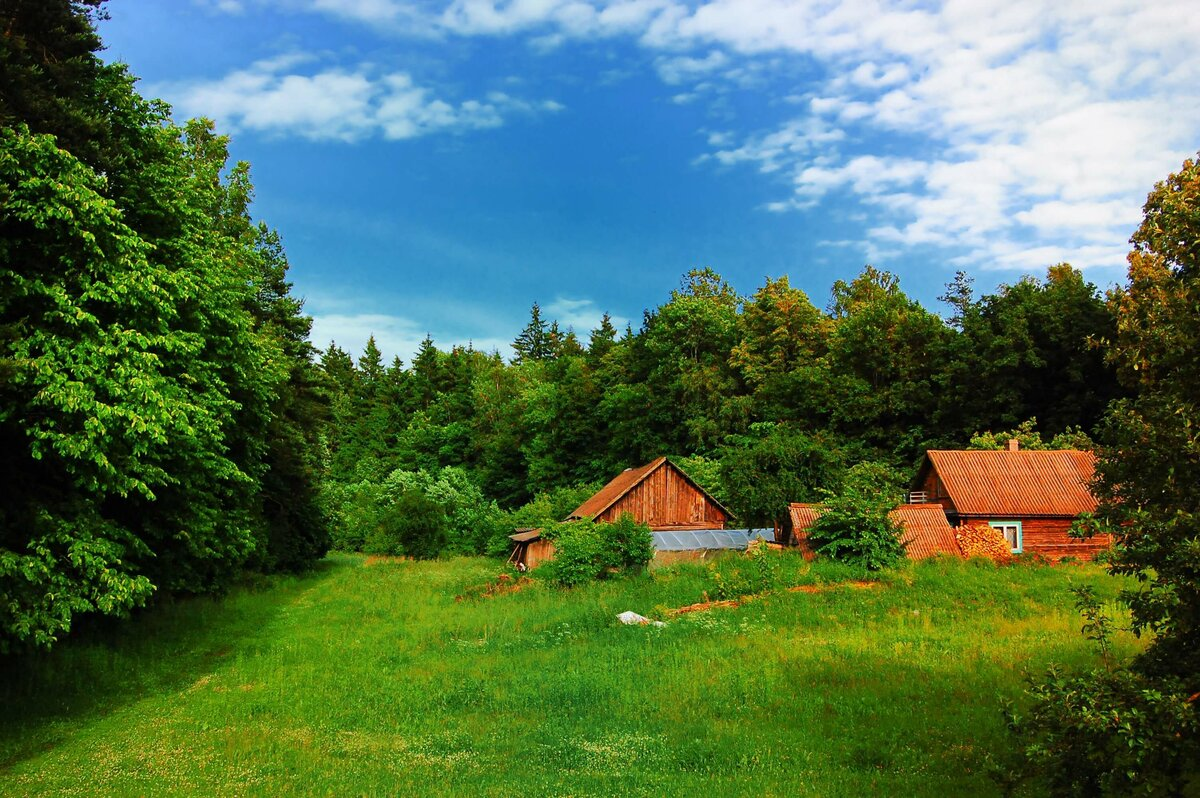 Мое лето в деревне картинки