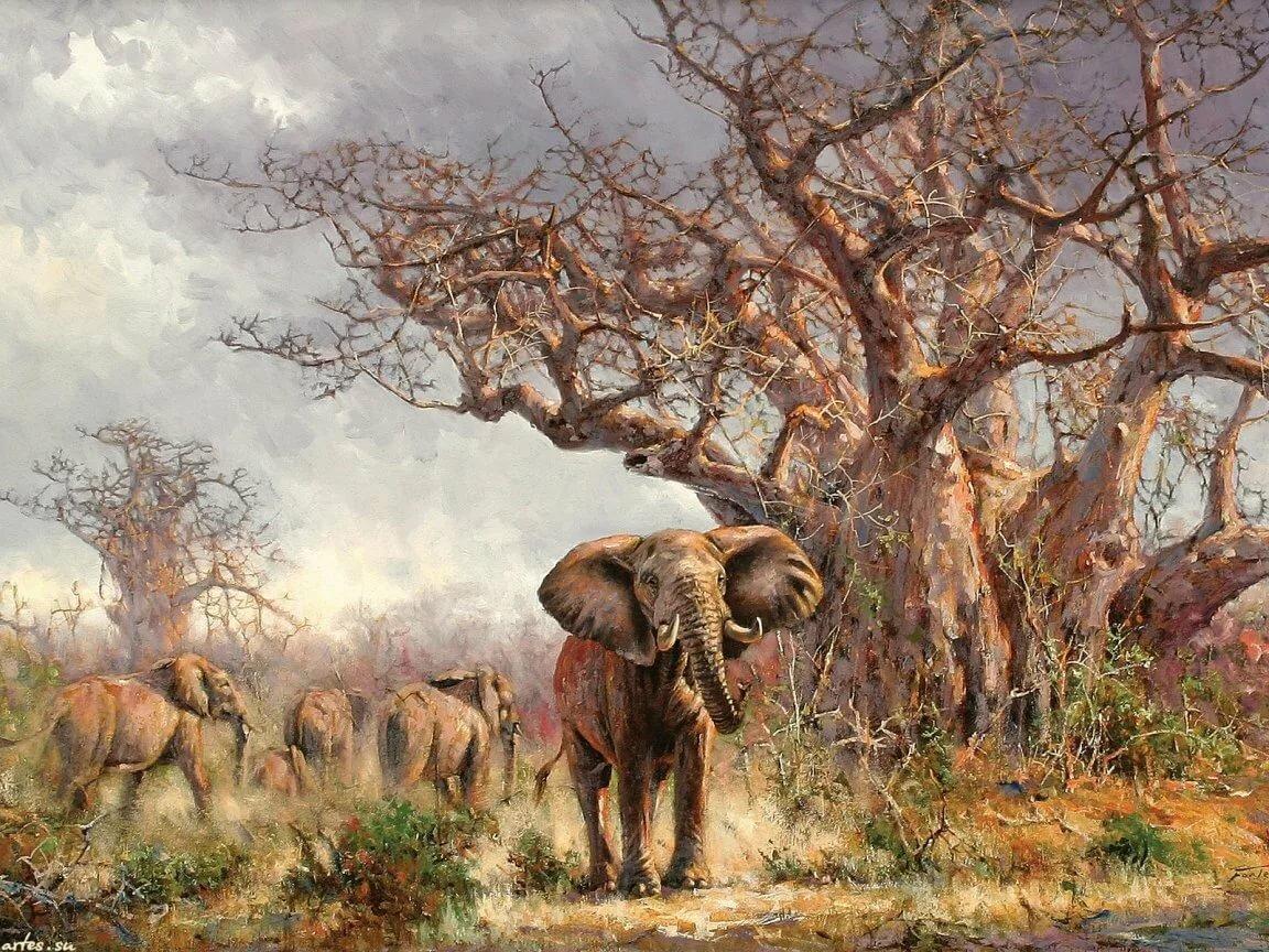 такой картинки для декупажа природа и животные африки помнят