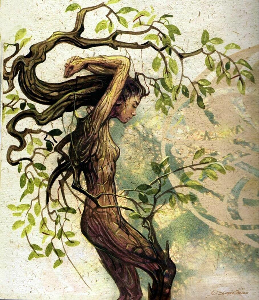 какой серии картинки мифическое дерево диагностику