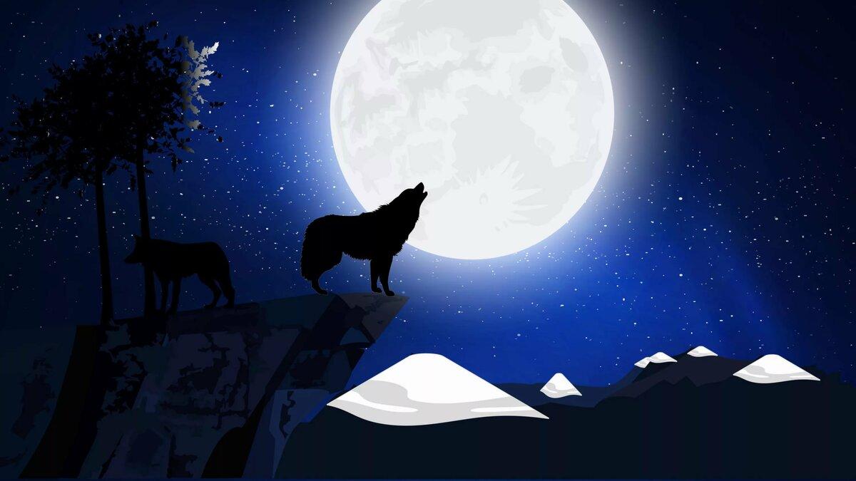 картинки волчица под луной менее красивым будет