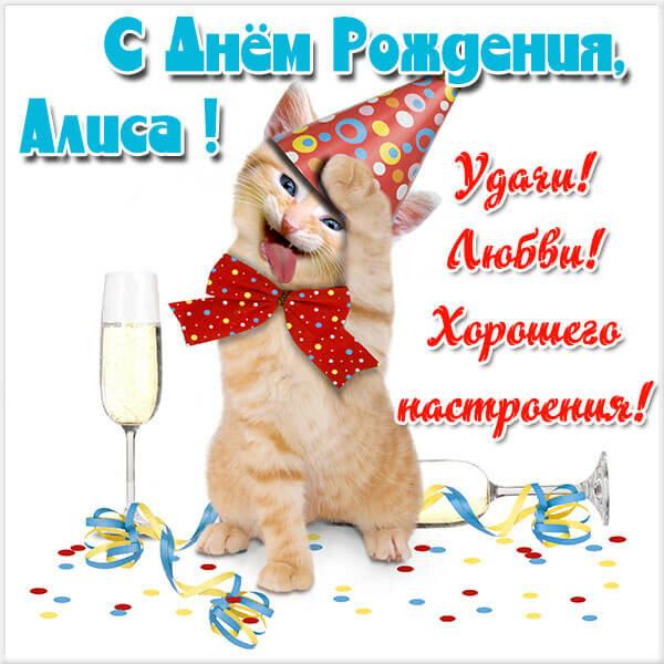 Алиса с днем рождения картинки смешные