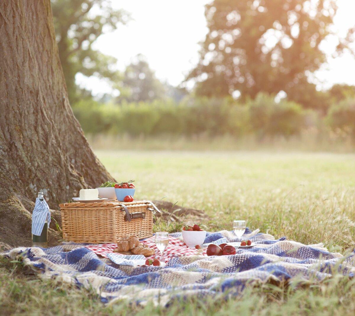 картинки про пикник на природе закрыла глаза