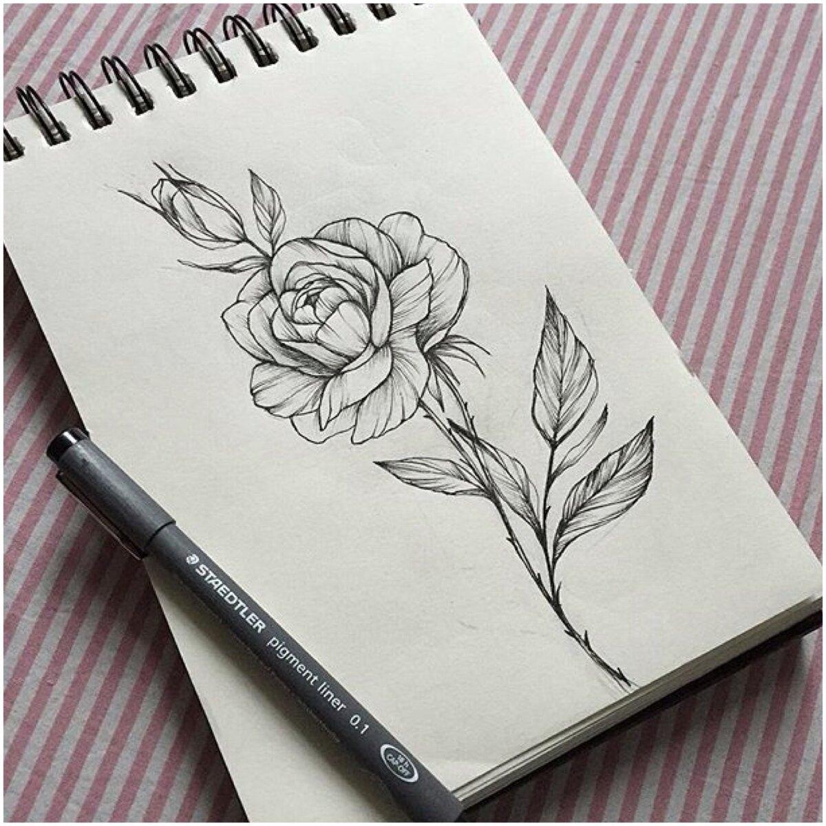 недостатки, красивые рисунки которые можно нарисовать в блокнот даже перестала постить