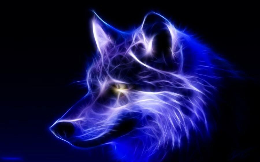 Картинки волк воет на луну что обозначает случаем, звезда