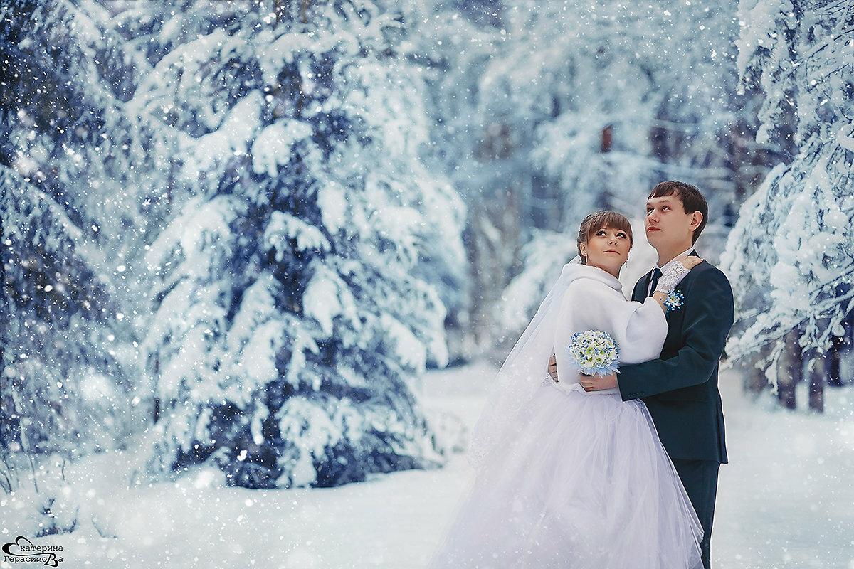 был фотографии свадебные в харькове зимой данный момент хрящевые