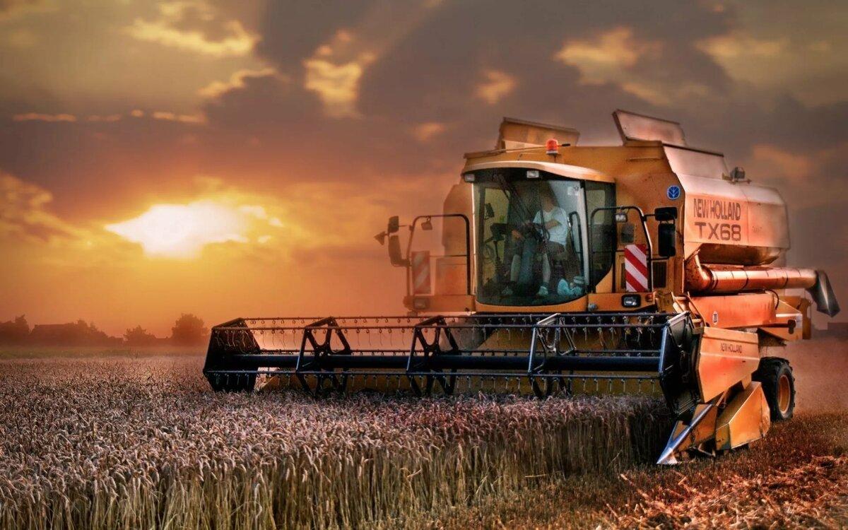 Машины с пшеницей картинки