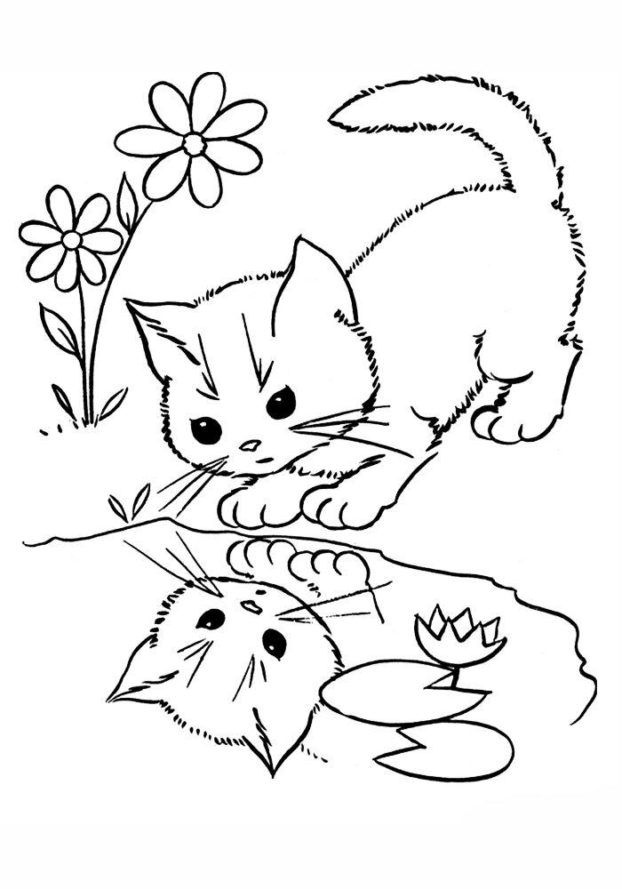 Раскраска живые котята