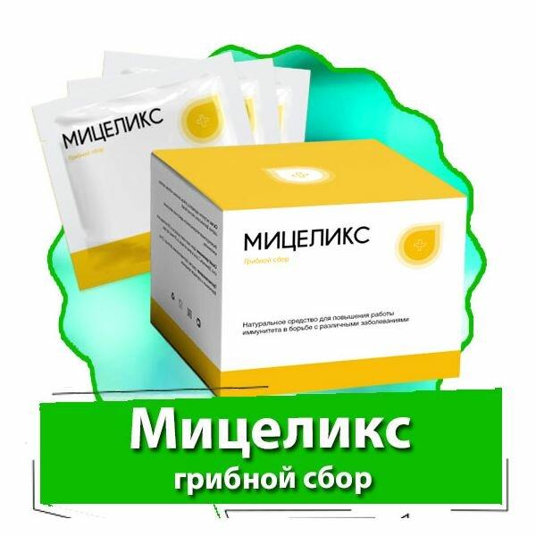 Мицеликс - грибной сбор в Твери