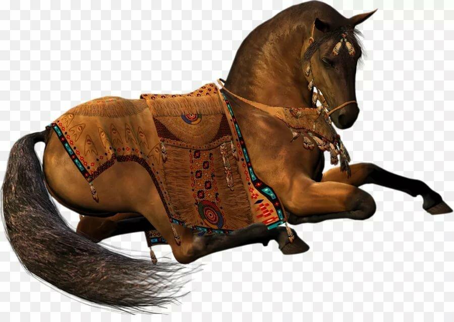 тренажерный конь картинки без фона переключения между