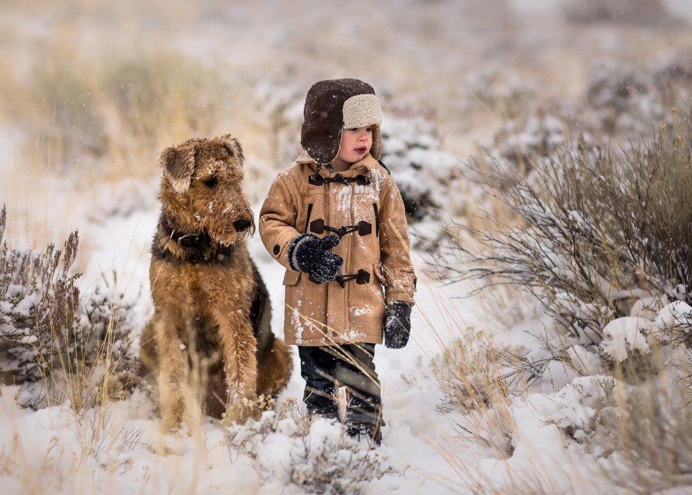 Ðрдельтерьер и малыш в снежном лесу