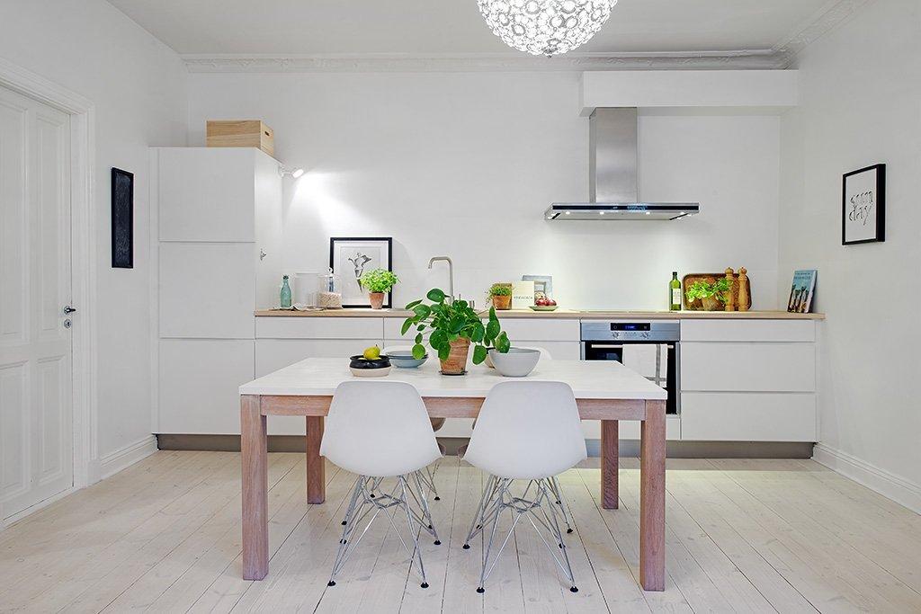 Interior design ideas : the white color in the kitchen