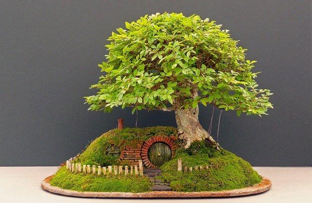 деревцо и забор
