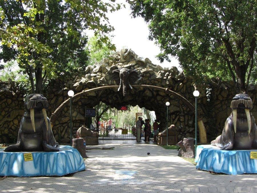 Сафари парк краснодар цены 2016 официальный сайт