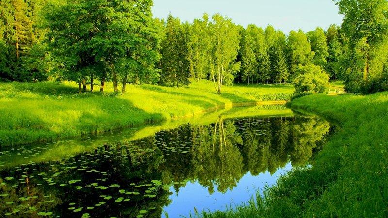 Яркий и сочный пейзаж!